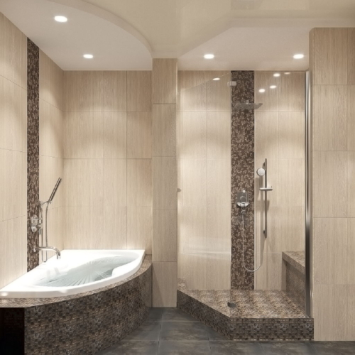Ванная, вид на душевую кабину и ванну